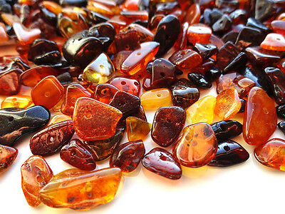 Mixed Natural Baltic Amber Loose Beads 20 Grams