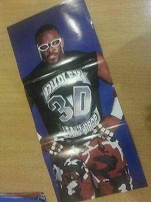 WWE (WWF) Wrestling - Dudley Boyz Bubba Ray & D Von Official Reversible Poster