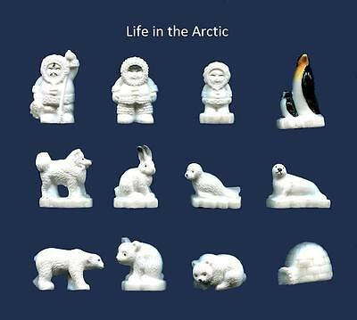 New Miniature Porcelain, The Life In The Arctic Collection, Set Of 12 Figurines