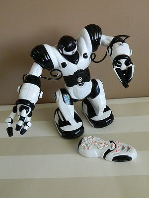 Remote Control Robot with Sound