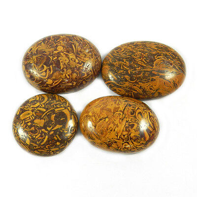Factory Price!! Gemstone Natural Mariam Jasper 4pcs Loose Mix Cabochon GS01330