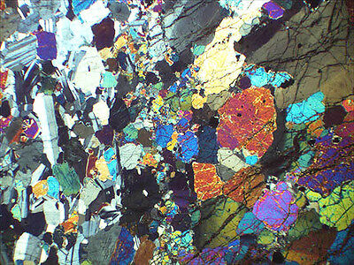 Geological Thin Section Microscope Slide: Dunite in Gabbro, Isle of Skye
