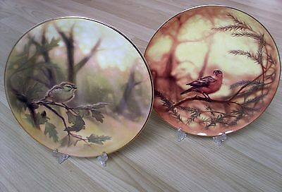 "Country Artists 20 cms Bone China Plates ""GOLDCREST & CHAFFINCH"""