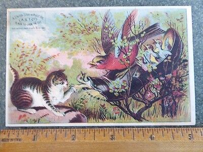 Vintage A.s.t. Co. Children's Shoes Trade Card - A. Rose & Daughter, Hagerstown