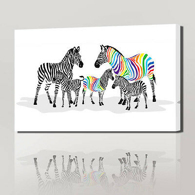 wall pictures for living bed room colorful zebra horse animal prints and posters