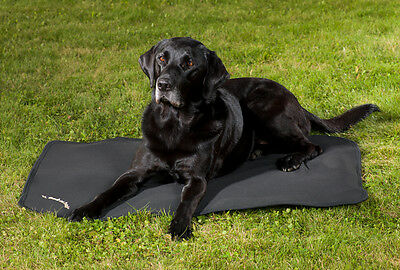 Back On Track Pain Relief Canine Dog Mattress, Cage Fit