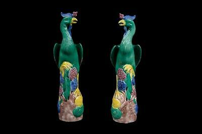 China 20. Jh. Pfauen - A Pair of Chinese Porcelain Peacocks - Chinois Cinese