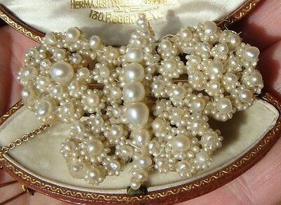 Antique Georgian 1820 Natural Seed Pearls Butterfly Brooch with Gold Pin