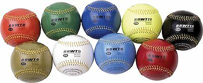 Champion Sports Weighted Training Baseball Set With Nylon Carrying Case 9 Count