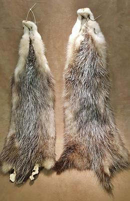 2 LG Soft Tanned Grey Possum Hides #1 - Perfect for sewing/crafts -Winter Fur