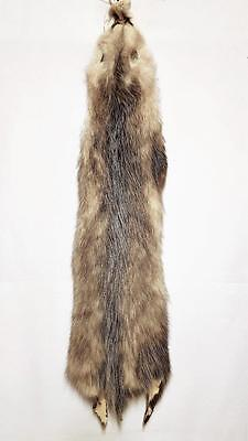 Large Tanned Opossum Hides Case Cut -No defects- 4 for Crafts and Manuf. decor