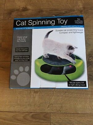 Spinning Chase Cat Kitten Indoor Noise Making Mouse Hunt Toy