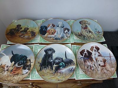 Franklin Mint Heirloom Collection Limited Edition Dog Plates