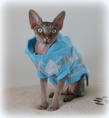 WINTER HOODIE adult cat jumper for a Sphynx  cat, clothes, jumper, sweater
