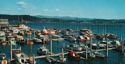Collectable Postcard Of Vintage Boats In Astoria, Oregon