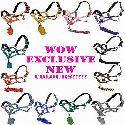 White Horse Equestrian Quality Animal Print Soft Padded Comfy Halter Head Collar