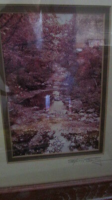 """Print Landscape Photograph Nature 10 1/2"""" x 12 1/4"""" Professionally Matted Framed"""