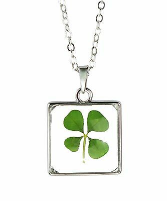 Celtic Lucky Real Four Leaf Clover Glass Square Pendant Necklace Silver Plated