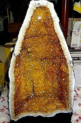 High Grade Tall 24 Inch Brazilian Citrine Crystal Cathedral Cluster Geode
