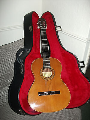 Esteve 3/4 Size Guitar, 3St58 with Hard Case and New Stagg Strings