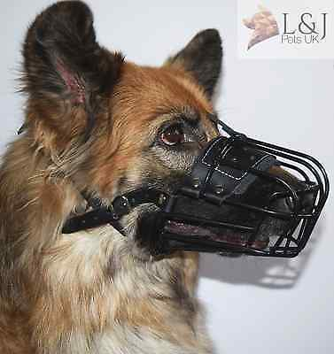 Metal Basket Antifreeze Muzzle for Winter German Shepherd , Labrador and other