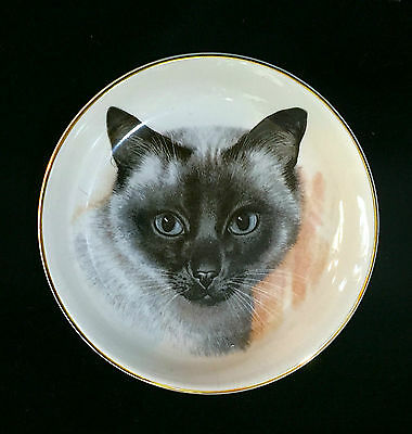 """Staffordshire Siamese Cat England Plate Gold Rim Crown China 4.25"""""""