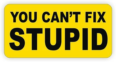 You Cant Fix Stupid Hard Hat Sticker / Welding Helmet Decal / Vinyl Label Funny