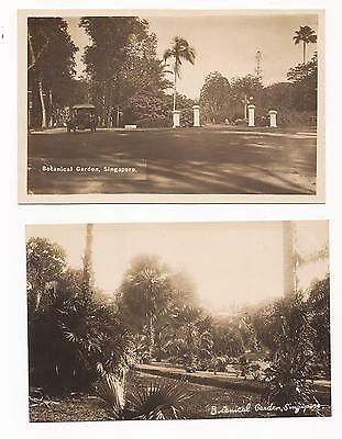 SINGAPORE - Botanical Gardens; two vintage Real Photo Cards.