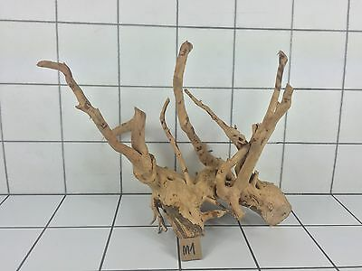 Red Moor Aquarium Wood Root Size M (Iwagumi Aquascaping Bogwood Driftwood)