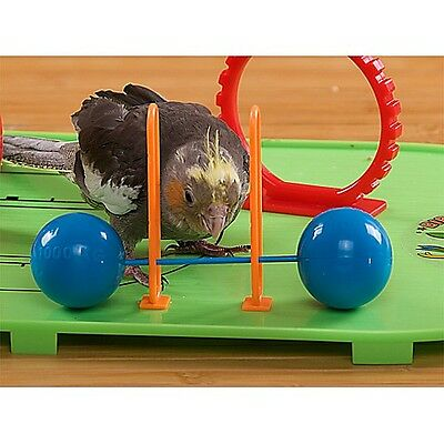 Birdie Basketball Gym Play Stand For Parrots Budgie Cockatiel Love Bird
