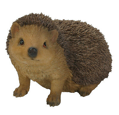 Vivid Arts - REAL LIFE WOODLAND ANIMALS - Hedgehog
