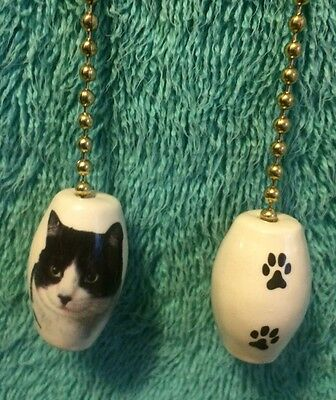 One Black And White Cat With Paw Prints On The Back! 1-inch