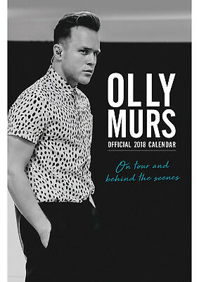 Olly Murs Official 2017 A3 Wall Calendar Brand new 9781785490460