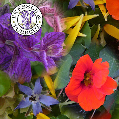 Rare  Annual Edible Flowers, annual flowers - mixed seeds - UK SELLER