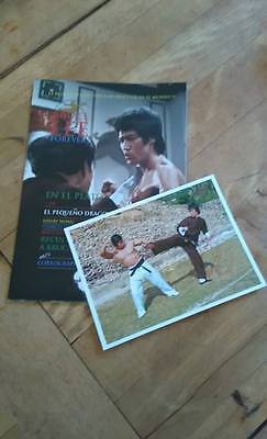 Order The Official Spanish Official Bruce Lee Forever Spanish Edition With F