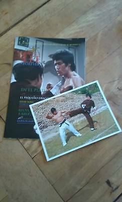 Pre Order The Official Spanish Official Bruce Lee Forever Spanish Edition With F