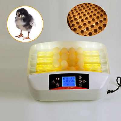 32 Egg Automatic Digital Turning Incubator Chicken Hatcher Temperature Control