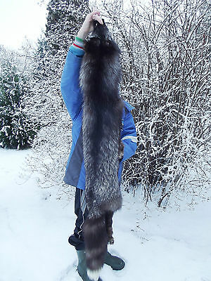 REAL WILD FOX FUR PELT SKIN with CLAWS MOUNTABLE TAXIDERMY
