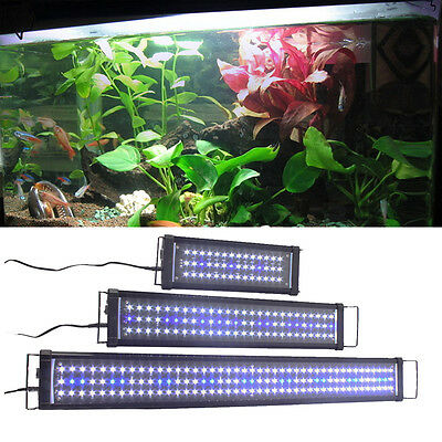 Aquarien ECO Aquarium Fish Tank OverHead LED SMD Lamp white-blue Light 120cm/4ft