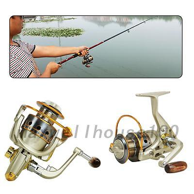New Outdoor Summer Reel 10BB 5.5:1 High Speed Fishing Reel
