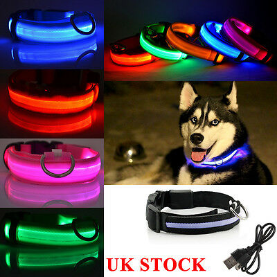 Rechargeable/Non-Rechargeable LED Dog Pet Collar Flashing Luminous Safety Light