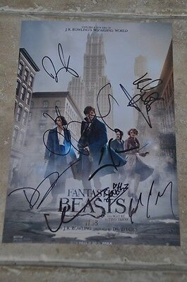 "Multi Signed Fantastic Beasts 12"" x 8"" Colour Photo Eddie Redmayne,Dan Fogler +6"