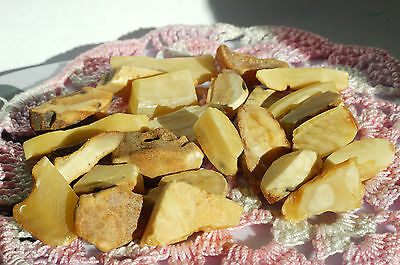 Antique Baltic Amber Raw Stones 28 Grams,royal White Color