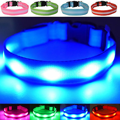 USB Rechargeable LED Dog Safety Collar -  Improved Safety