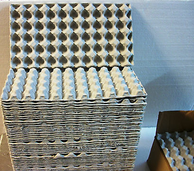 """6 QUAIL EGG Shipping Cartons Trays 13"""" X 7"""" Paper Mache Holders Holds 50 Eggs Ea"""