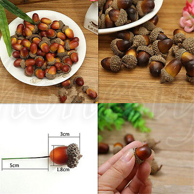 10~50X Fake Artificial Food Kitchen Simulation Acorn Chestnut Display Prop Decor