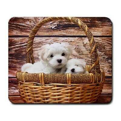 Cute Baby Maltese Puppy Puppies Dogs Pets In Basket Large Mousepad Pc Mouse Pad