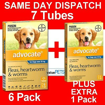 Advocate for Dogs Over 25kg 6 PACK PLUS BONUS 1 PACK **Lowest Price per Tube**