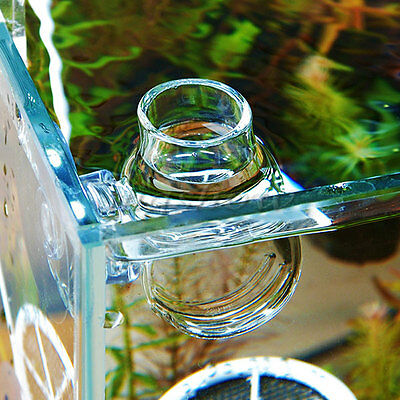New Clear Glass Bubble Crystal Red Shrimp Fish Bowl Feeding Cup Basin Plant Tank