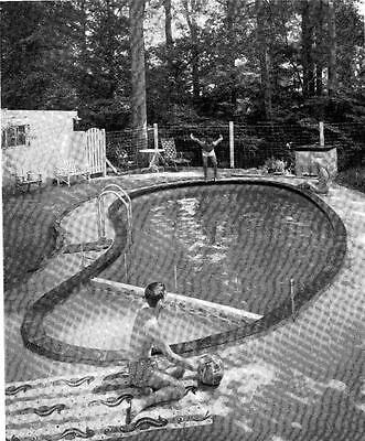 How To Build Swimming Pool For Home Backyard 16' x 32' (for $299?) Swim Play #78